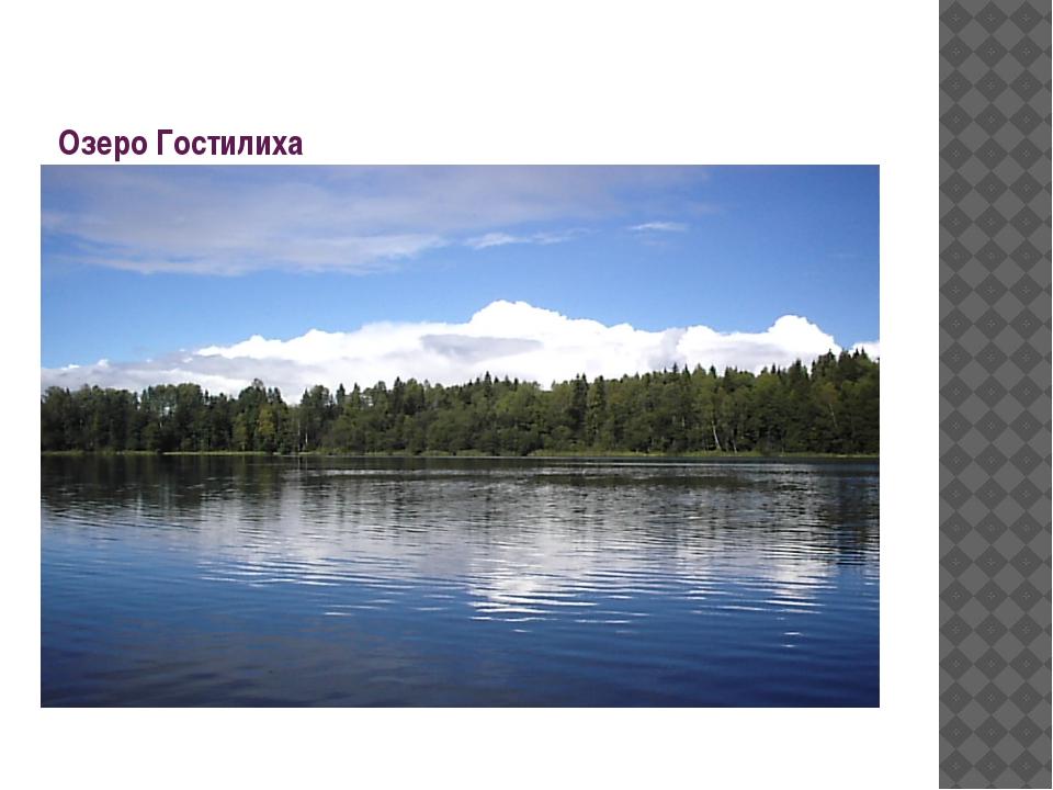 Озеро Гостилиха