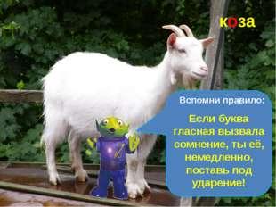С бородой, а не старик, С рогами, а не бык, Доят, а не корова, С пухом, а не