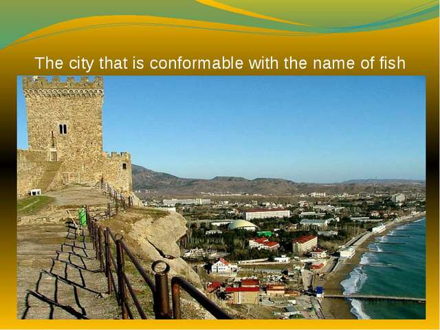 The city that is conformable with the name of fish