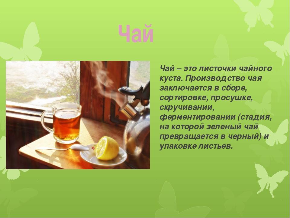 Чай – это листочки чайного куста. Производство чая заключается в сборе, сорти...