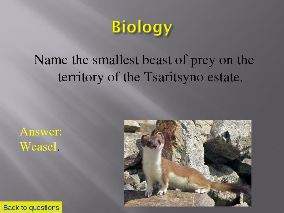 Name the smallest beast of prey on the territory of the Tsaritsyno estate. Ba...