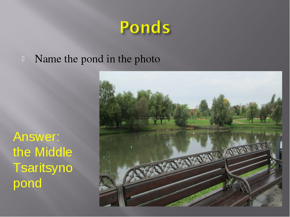 Name the pond in the photo Answer: the Middle Tsaritsyno pond