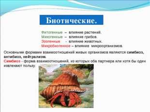 Биотические. Фитогенные – влияние растений. Микогенные – влияние грибов. Зоог