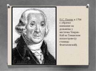 П.С. Паллас в 1794 г. обратил внимание на дольмены у местечка Чокрак-Кой на Т