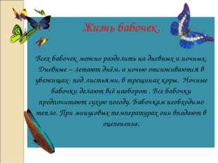 Жизнь бабочек. Всех бабочек можно разделить на дневных и ночных. Дневные – ле