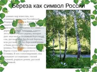Береза как символ России С давних пор известно, что основным символом Российс