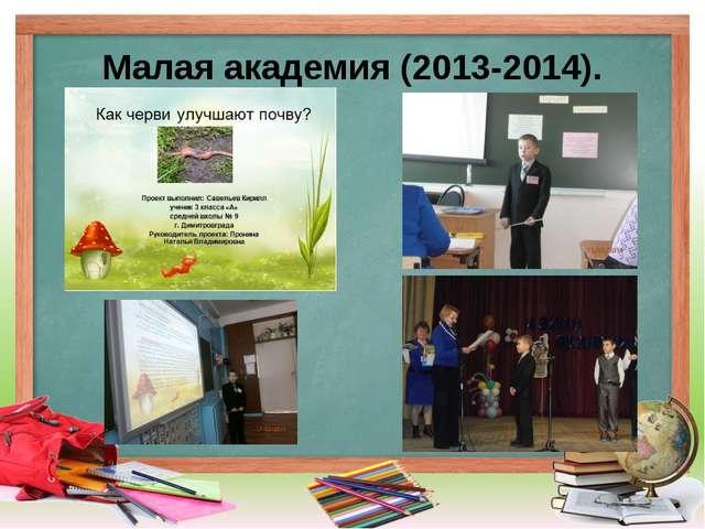 Малая академия (2013-2014).