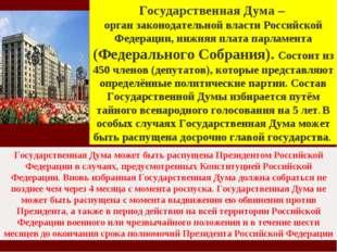 Государственная Дума – орган законодательной власти Российской Федерации, ниж