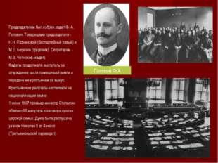 Председателем был избран кадет Ф. А. Головин. Товарищами председателя - Н.Н.