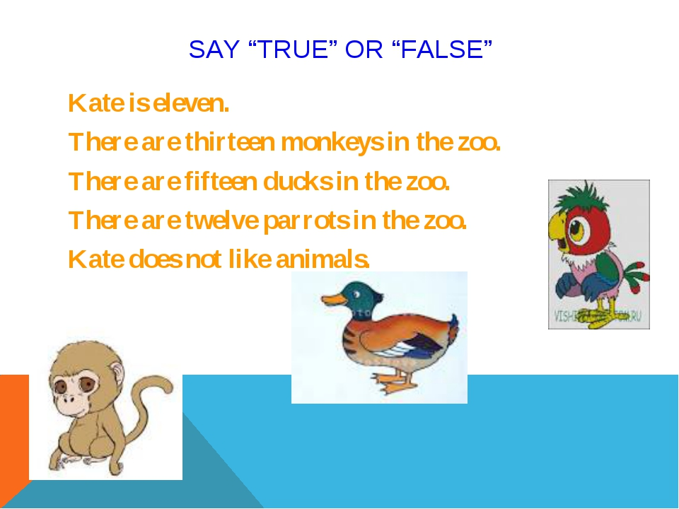 "SAY ""TRUE"" OR ""FALSE"" Kate is eleven. There are thirteen monkeys in the zoo...."