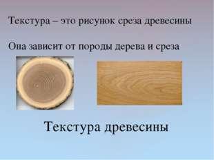 Текстура древесины Текстура – это рисунок среза древесины Она зависит от поро