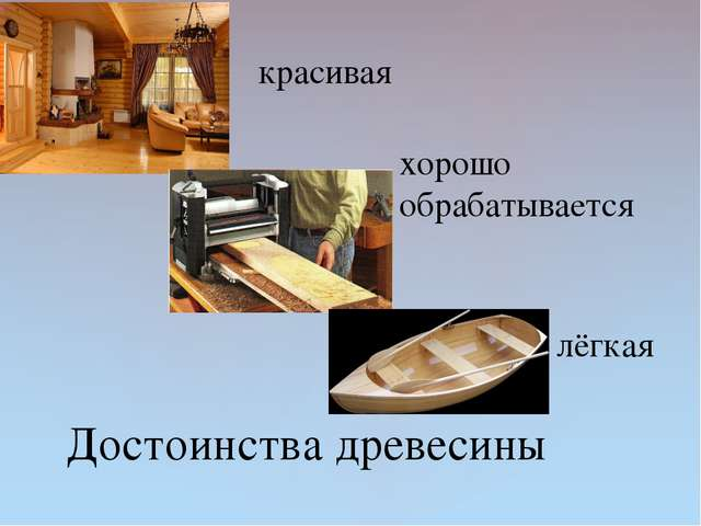 Достоинства древесины красивая хорошо обрабатывается лёгкая