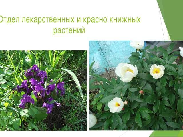 Отдел лекарственных и красно книжных растений