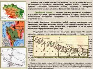 Рельеф края Рельеф края разнообразен и делится по абсолютным высотам на низме