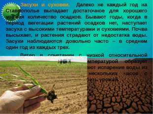 Засухи и суховеи. Далеко не каждый год на Ставрополье выпадает достаточное д