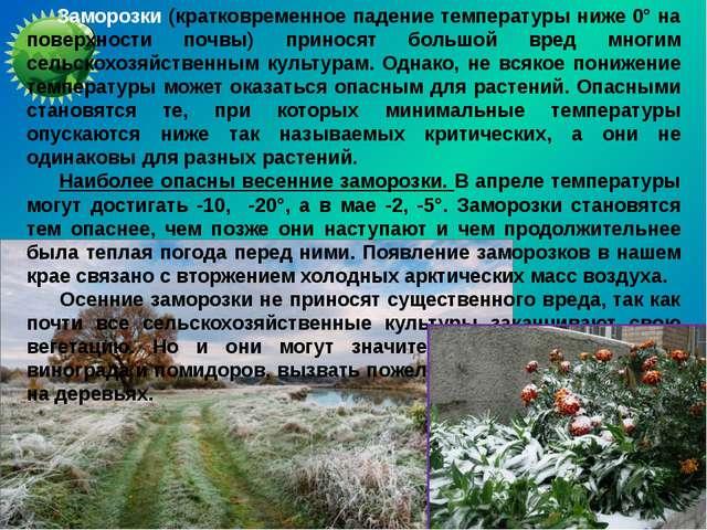 Заморозки (кратковременное падение температуры ниже 0° на поверхности почвы)...