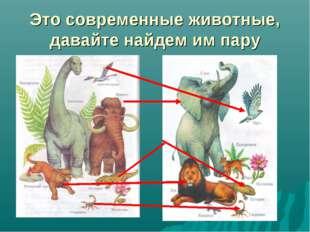 Это современные животные, давайте найдем им пару