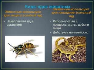Животные используют для защиты (слабый яд) Накапливают яд в организме Животн
