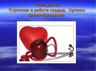 Тема урока: Строение и работа сердца. Органы кровообращения.