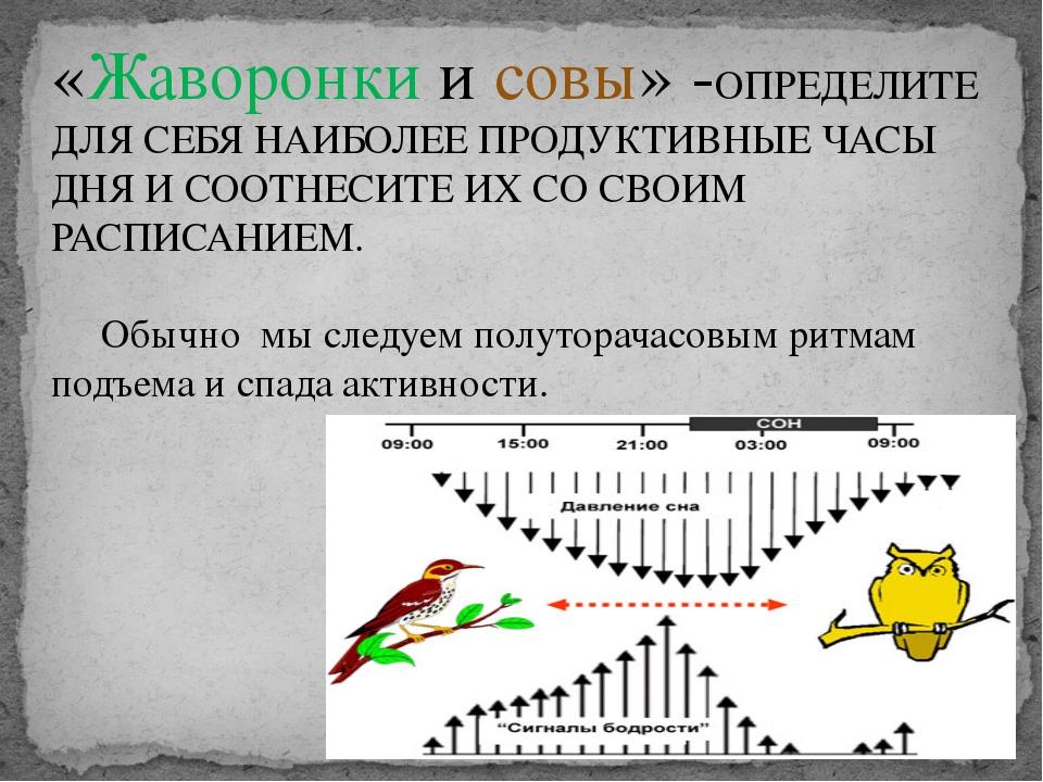 «Жаворонки и совы» -ОПРЕДЕЛИТЕ ДЛЯ СЕБЯ НАИБОЛЕЕ ПРОДУКТИВНЫЕ ЧАСЫ ДНЯ И СООТ...