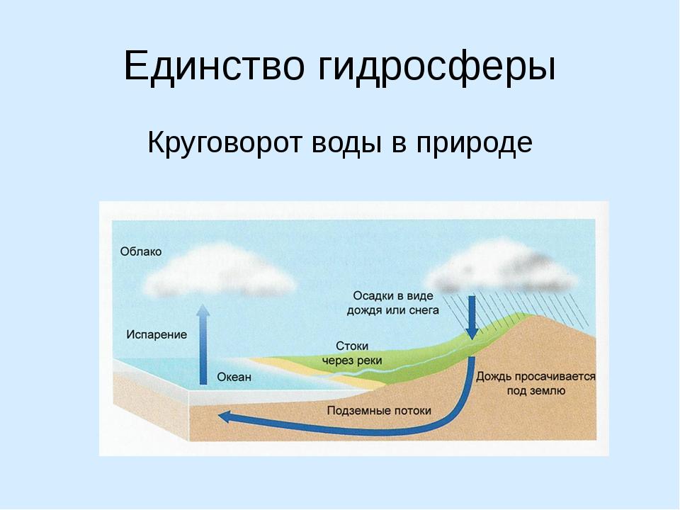 Единство гидросферы Круговорот воды в природе