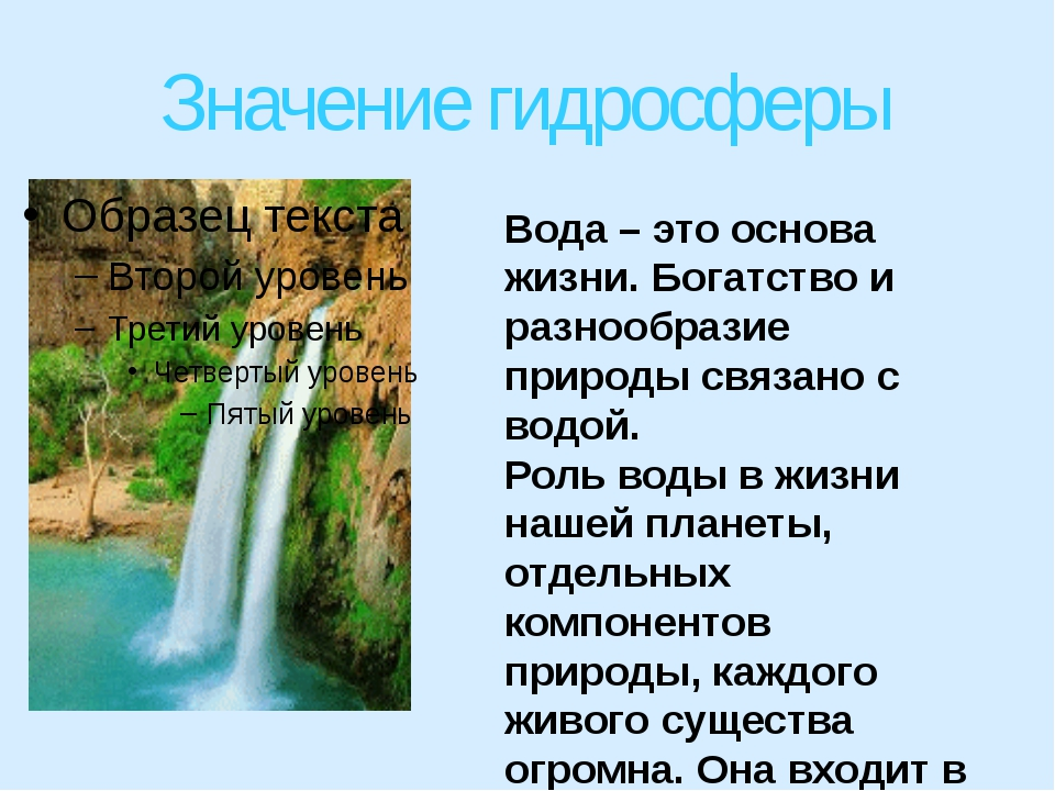 Значение гидросферы Вода – это основа жизни. Богатство и разнообразие природы...
