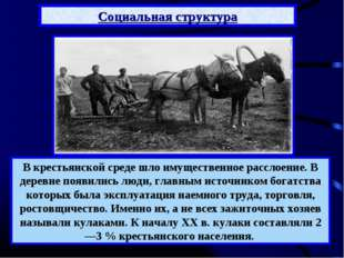 Социальная структура В крестьянской среде шло имущественное расслоение. В дер