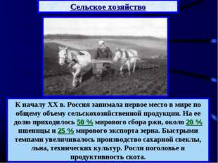 К началу XX в. Россия занимала первое место в мире по общему объему сельскохо