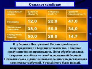 В губерниях Центральной России преобладали полусередняцкие и бедняцкие хозяйс