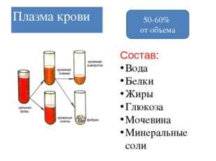 Название клетки Кол-во1 мм3 Особенно-стистроения Выполня-емаяфункция Продолжи
