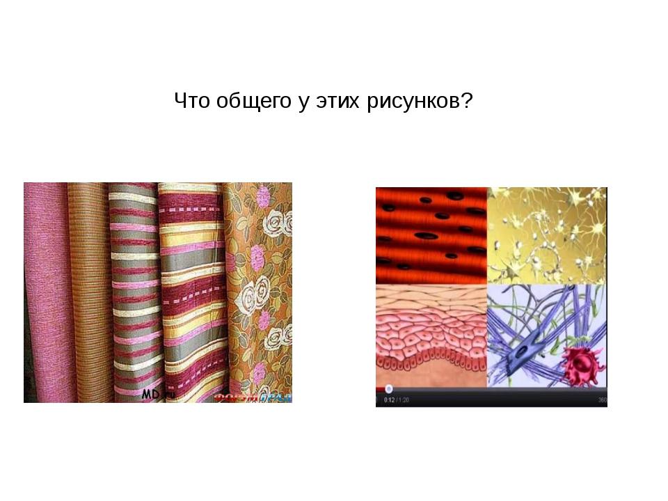 Что общего у этих рисунков?