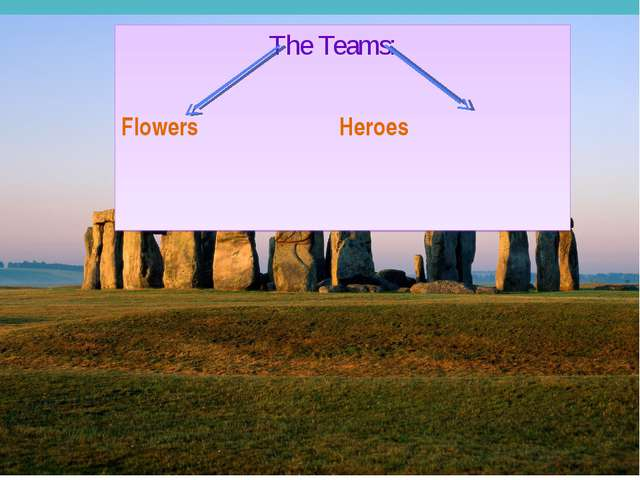 The Teams: Flowers Heroes