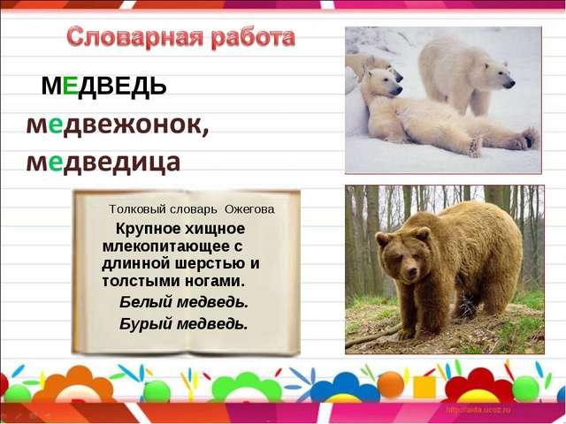 Толковый словарь Ожегова Крупное хищное млекопитающее с длинной шерстью и то...