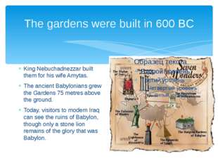 The gardens were built in 600 BC King Nebuchadnezzar built them for his wife
