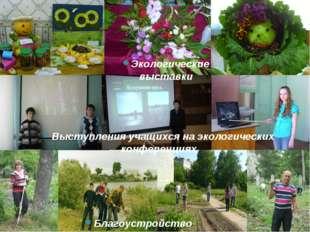 Благоустройство территории Экологические выставки Выступления учащихся на эко