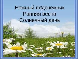 . * Нежный подснежник Ранняя весна Солнечный день