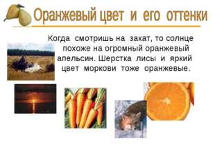 Когда смотришь на закат, то солнце похоже на огромный оранжевый апельсин. Шер