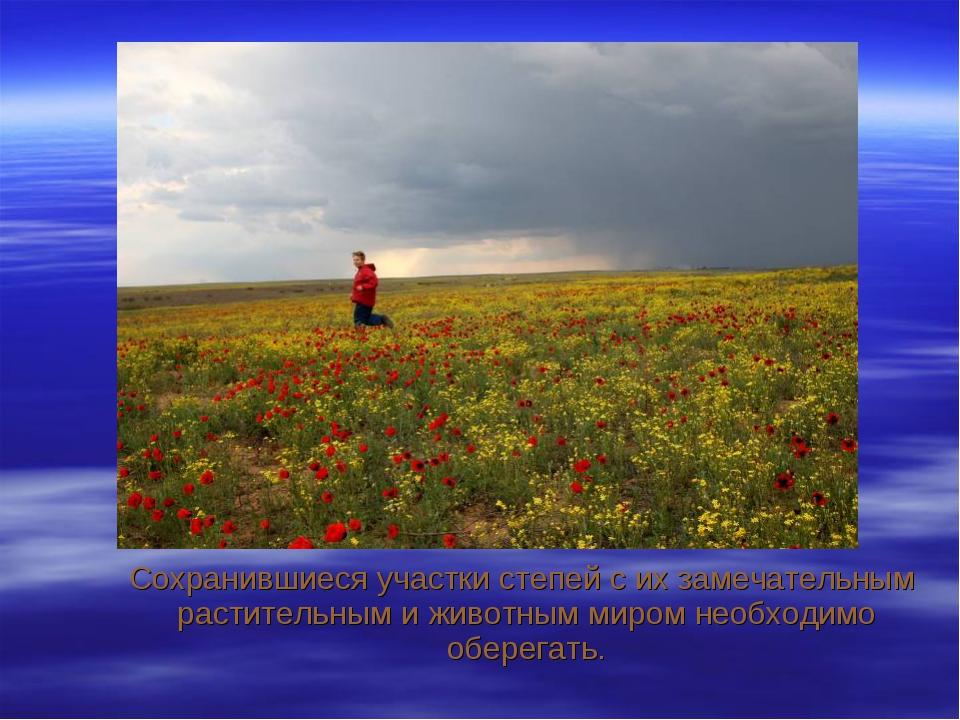 Сохранившиеся участки степей с их замечательным растительным и животным миро...