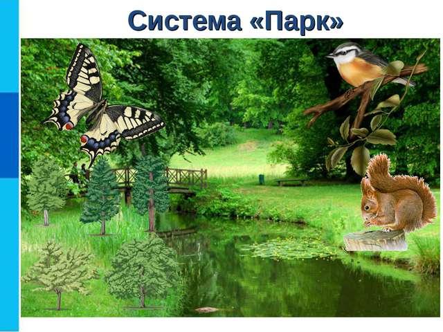 Система «Парк» Птицы Деревья Насекомые Животные