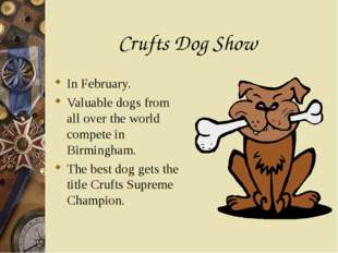 Crufts Dog Show In February. Valuable dogs from all over the world compete in
