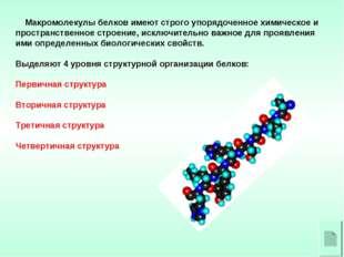 Макромолекулы белков имеют строго упорядоченное химическое и пространственно