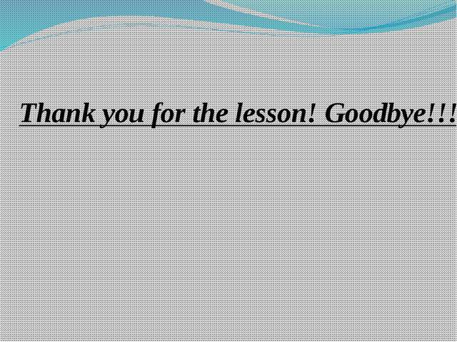 Thank you for the lesson! Goodbye!!!