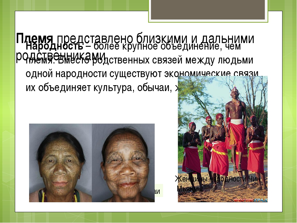 Племя представлено близкими и дальними родственниками Народность – более круп...