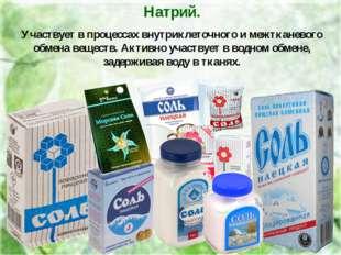 Натрий. Участвует в процессах внутриклеточного и межтканевого обмена веществ.