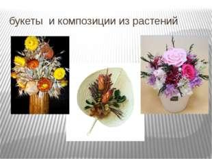 букеты и композиции из растений