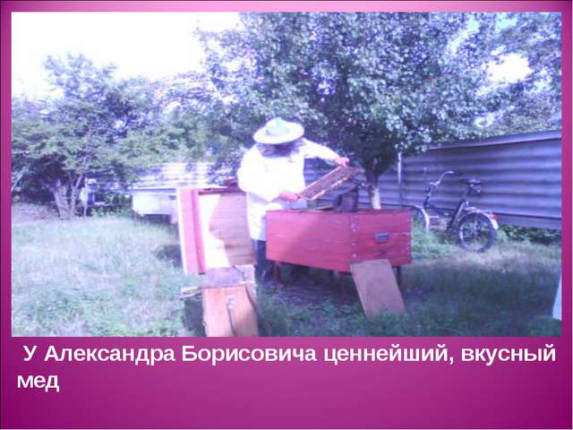 У Александра Борисовича ценнейший, вкусный мед