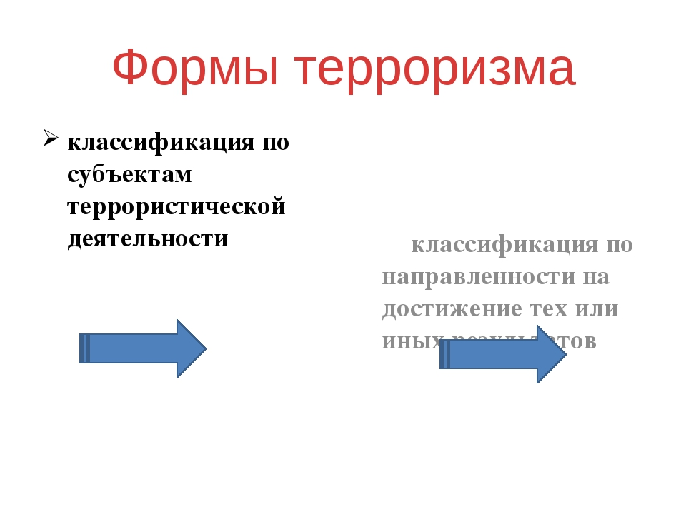 Внутригосударственный (политический)терроризм Деятельность специально организ...