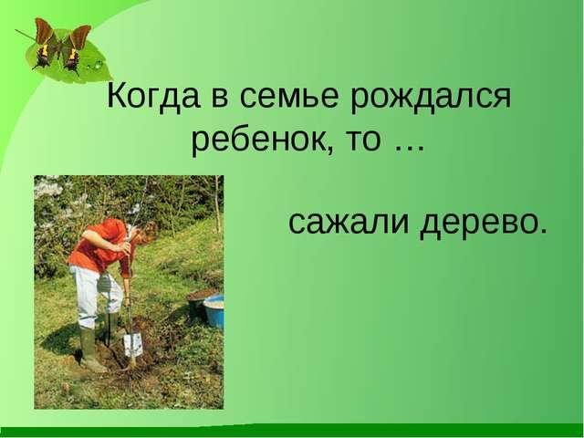 Когда в семье рождался ребенок, то … сажали дерево.
