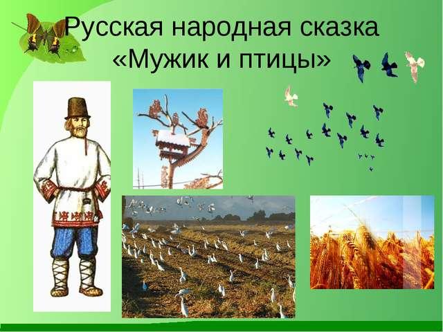 Русская народная сказка «Мужик и птицы»