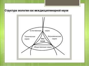 Структура экологии как междисциплинарной науки